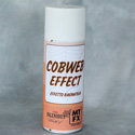 Photo of Cobweb Effect